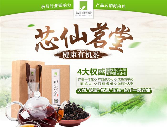 芯仙茗堂有机高山茶2.png