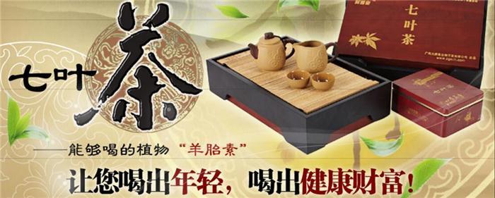 舜赐皇七叶茶加盟.jpg