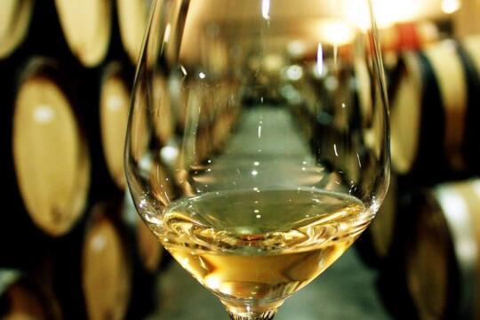 卡洛金马葡萄酒庄加盟详情
