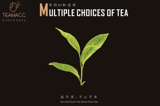 茶玛TEAMACC茶饮加盟详情