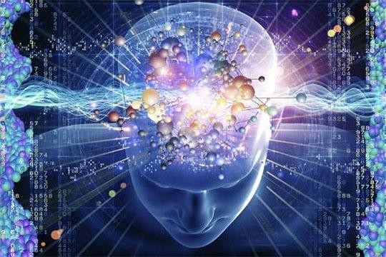 超強大腦開發項目加盟