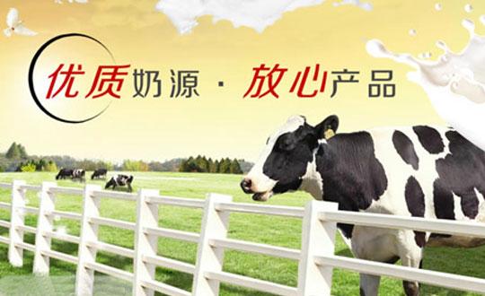 绿景牛奶加盟详情