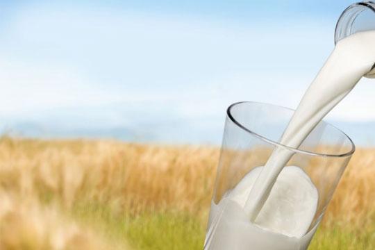绿景牛奶加盟流程