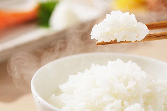嘉禾米业加盟