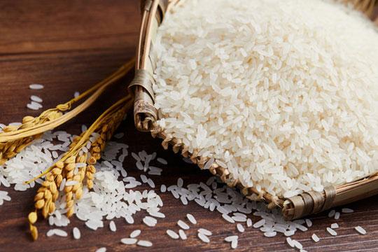 仓鱼米业加盟