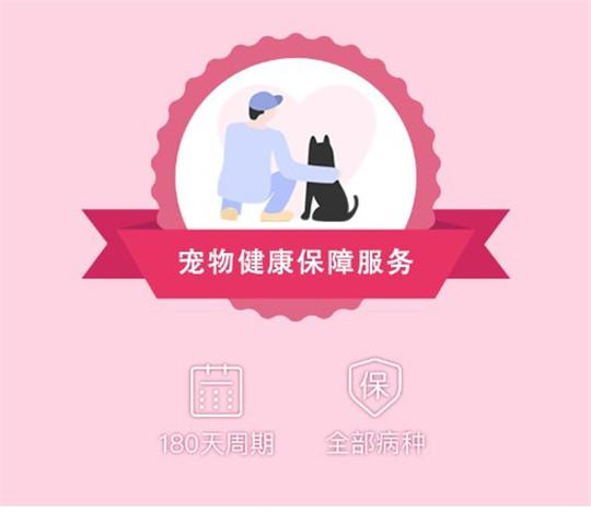 友安宠物:开放定点医院生态,加速宠物医疗消费升级