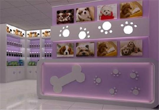 装修宠物店的5个必要条件