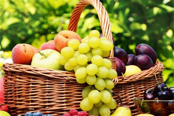 如何经营好一家水果加盟连锁品牌店