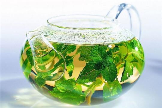 茶源传世茶叶加盟