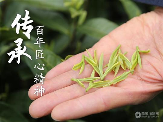 茶叶加盟店该怎么通过茶文化吸引客户