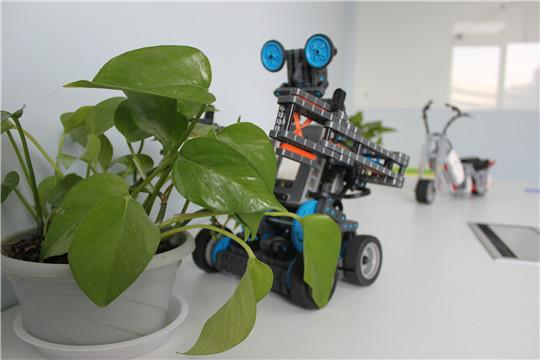 鲁伯特机器人教育