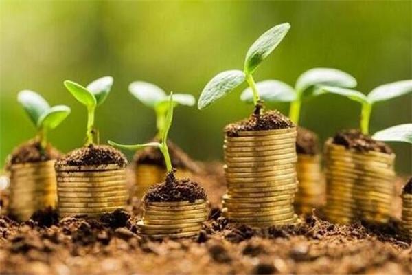 加盟金融项目还有发展前景吗
