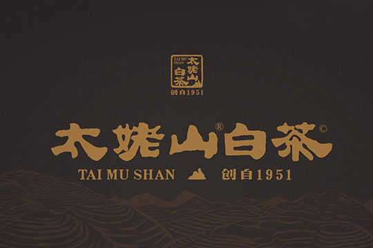 太姥山白茶