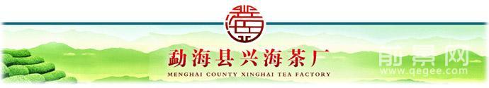 兴海普洱-海兴茶厂