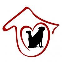大嘴狗寵物技術培訓學校加盟