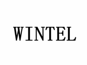 WINTEL电子雾化烟加盟