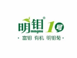 明鉬胎菊花茶加盟