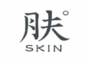 肤SKIN