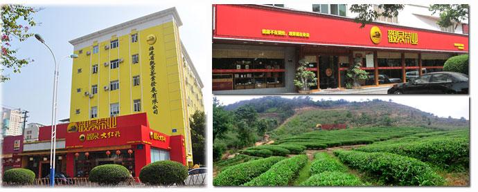 觀景茶業加盟