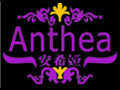 安希娅加盟