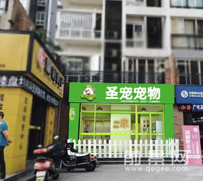 圣宠宠物乐山市市中区店