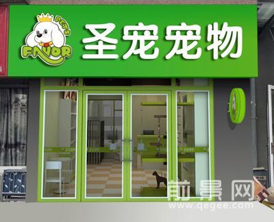 圣宠宠物北京通州宠物店
