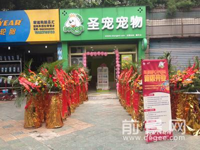 圣宠宠物重庆渝北宠物店