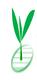 中国农产品信息连锁超市