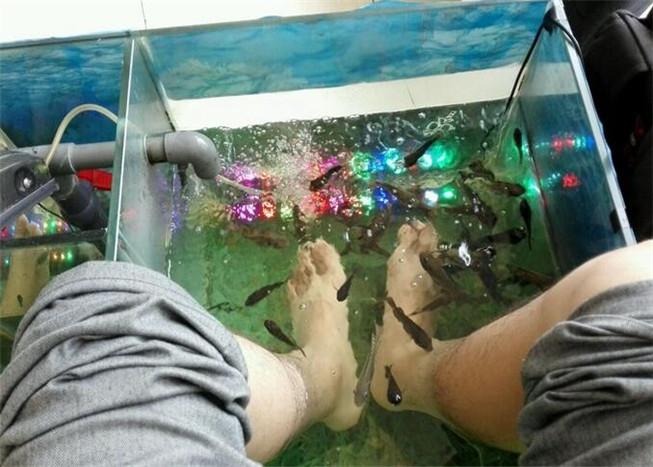 艾尚魚足浴