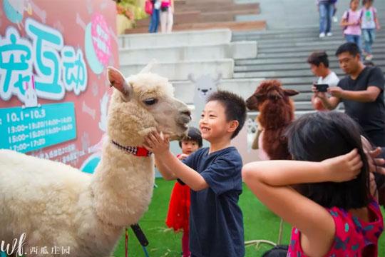 西瓜庄园儿童摄影加盟