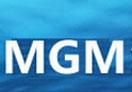 MGM金融