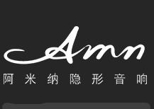 阿米纳隐形音响