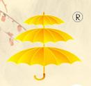 贝立雅文化创意伞加盟