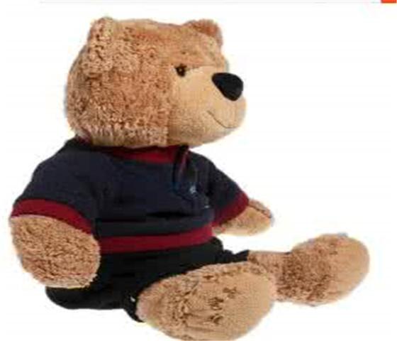 爱国者哈比熊玩具