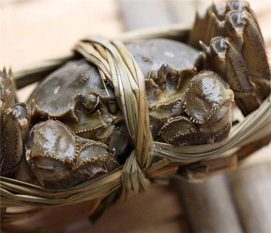 金水大闸蟹