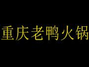 重庆老鸭火锅