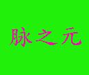 脉之元中医养生馆