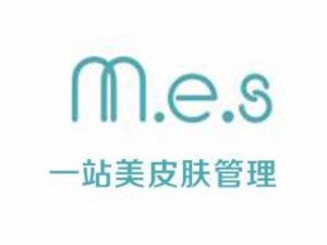 MES皮膚管理