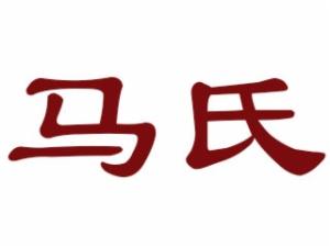 马氏黄焖鸡米饭