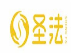 圣法中医经络减肥