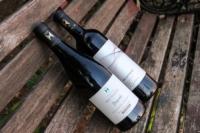 布兰维尔红酒加盟