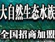 海之恋生态加盟