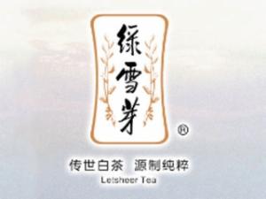 绿雪芽白茶