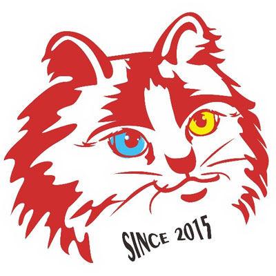 狮猫酒馆精酿啤酒加盟