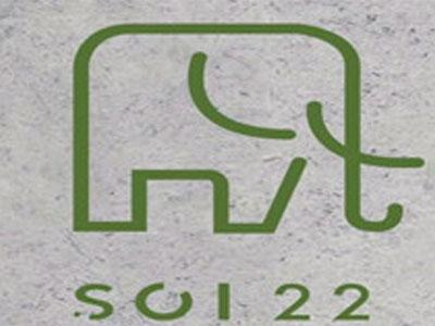 SOI22二十二象泰国菜加盟