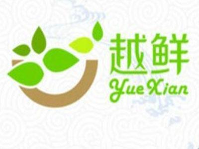 越鲜越南牛汤粉加盟