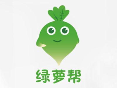 绿萝帮除甲醛