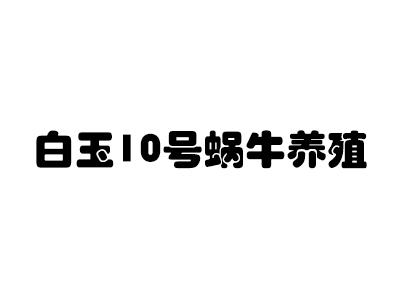 白玉10号蜗牛养殖加盟
