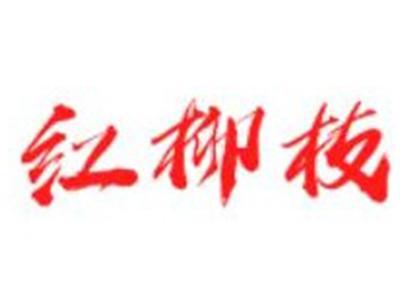 红柳枝滩羊烧烤加盟