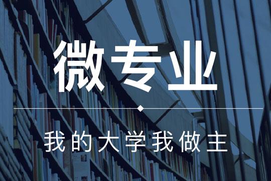 智慧树网在线教育加盟